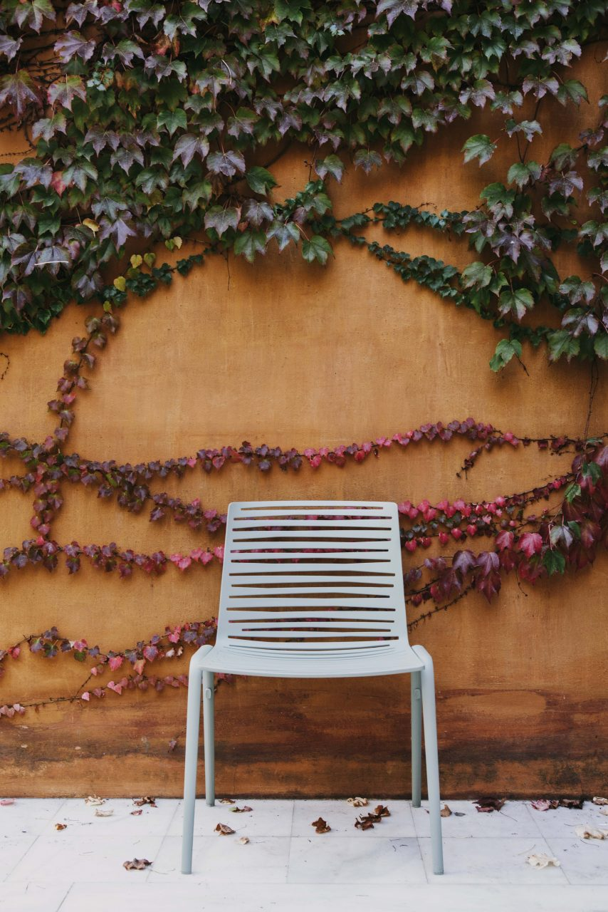 Zebra dining chair